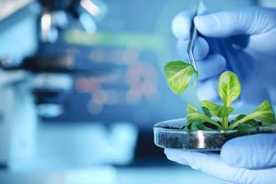 医学生物技术-生物实验