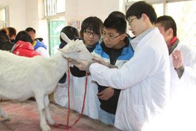 南充职业技术学院-畜牧兽医专业