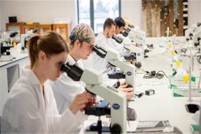 生物科学专业