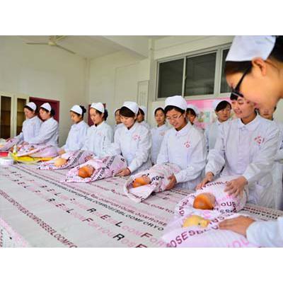 川北医学院-助产专业招生条件